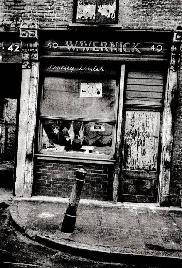 W. Wernick, Poultry Dealer, East London, 1962