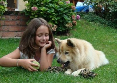 Mamo, tato! Ja chcę psa!   http://www.rodzinny-krakow.pl/zielono-mi/Mamo-tato-Ja-chce-psa.aspx