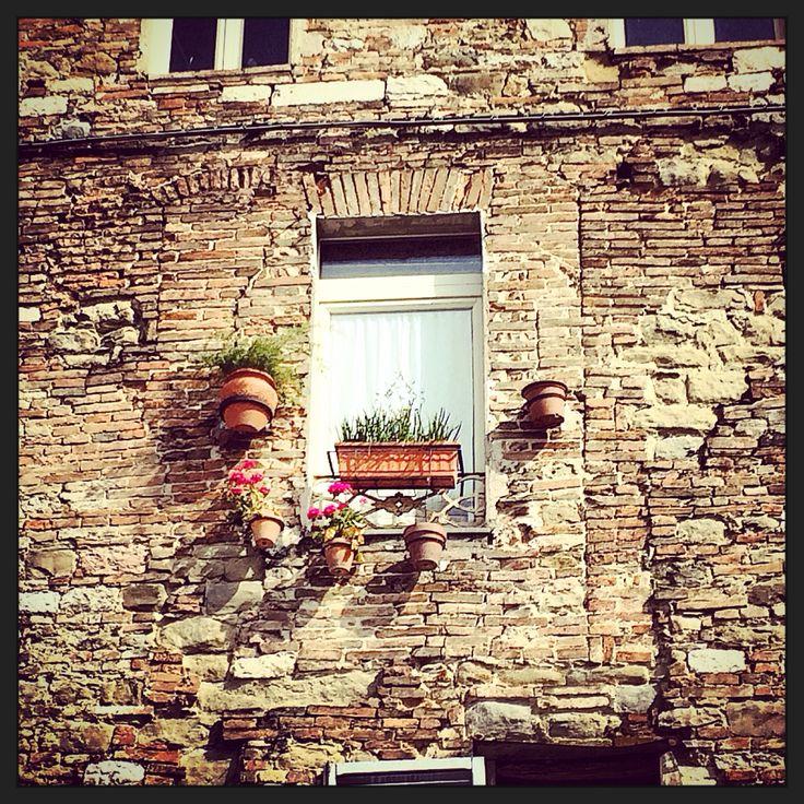 #Perugia #window #spring