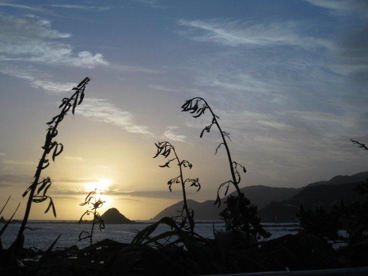 Lyall Bay, Wellington - by moi