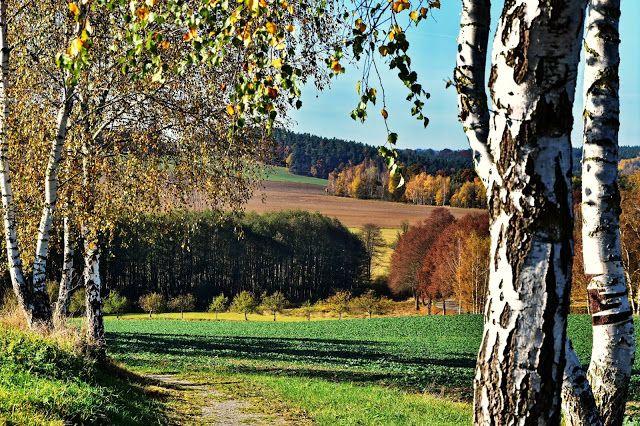 DEN PRO TEBE: Podzimní krajina pole, lesíky a louky objektivem f...