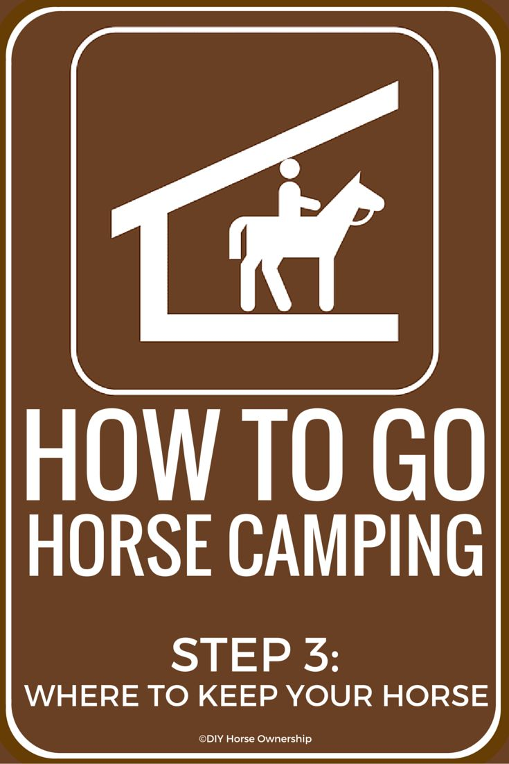 Vintage How to Go Horse Camping Where to Keep Your Horse