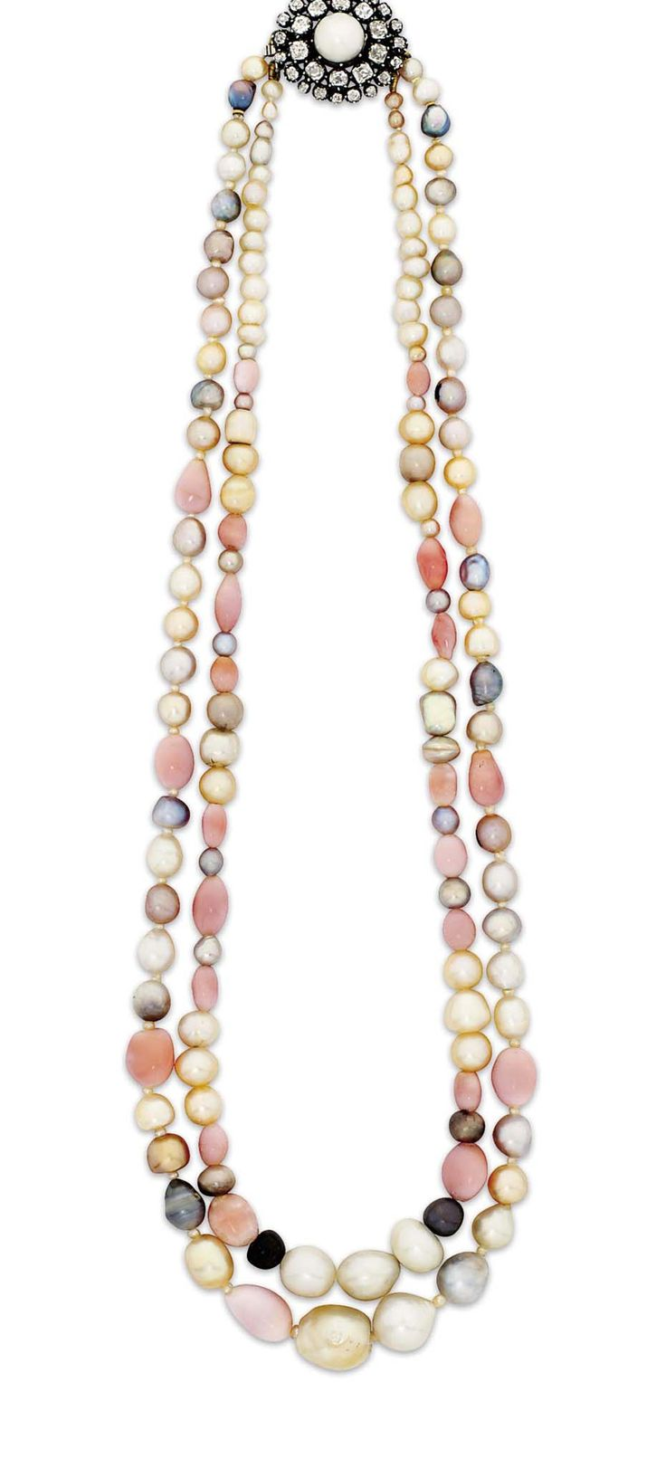 17 Best Images About Conch Pearls On Pinterest Pearl
