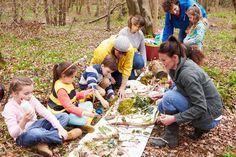 Einfach mal alle Schätze des Waldes ausbreiten und bestaunen, was alles gefunden wurde. • micromonkey / Fotolia.com