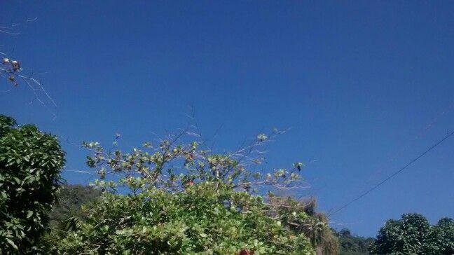 Cielo azul verani