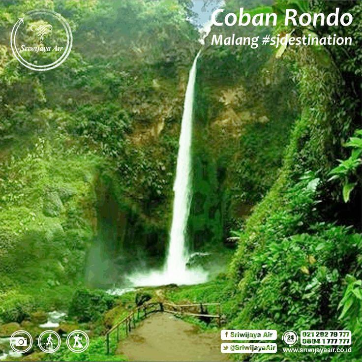 Malang adalah kota yang memiliki banyak wisata alam yang luar biasa. Di kelilingi oleh 5 gunung membuatnya memiliki spot air terjun yang cantik. Anda akan terkesima dengan keelokan air terjun yang berada di kaki Gunung Kawi, namanya adalah air terjun (Coban) Rondo. Ke Coban Rondo yuk! Kami terbang setiap hari ke Malang Partners.