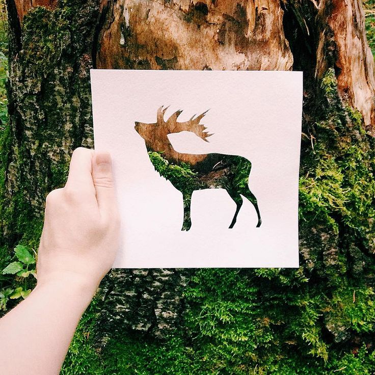 Artist Uses Nature To Color Paper Silhouettes Of Animals. I could use this technique when doing photography.
