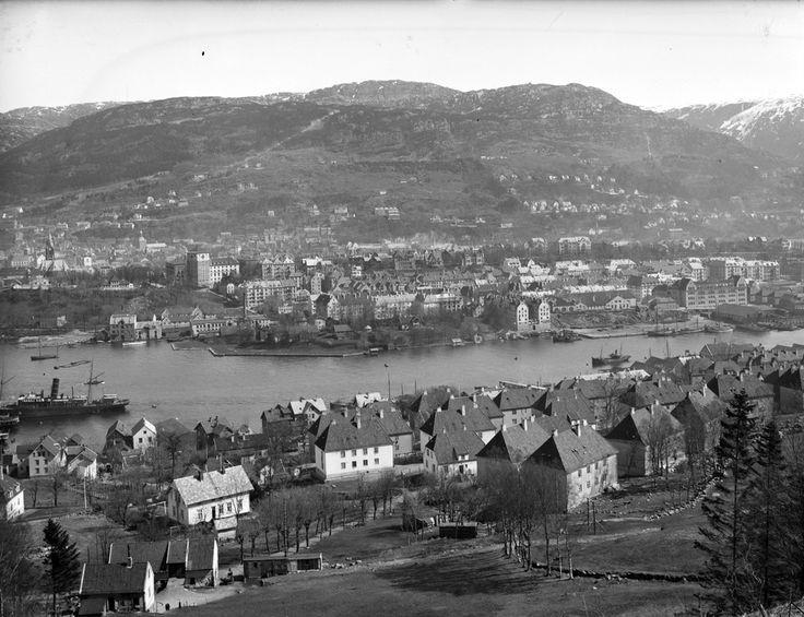 Byen tatt fra fjeldsti mot Løvstakken ovenfor Frydenbø - Marcus