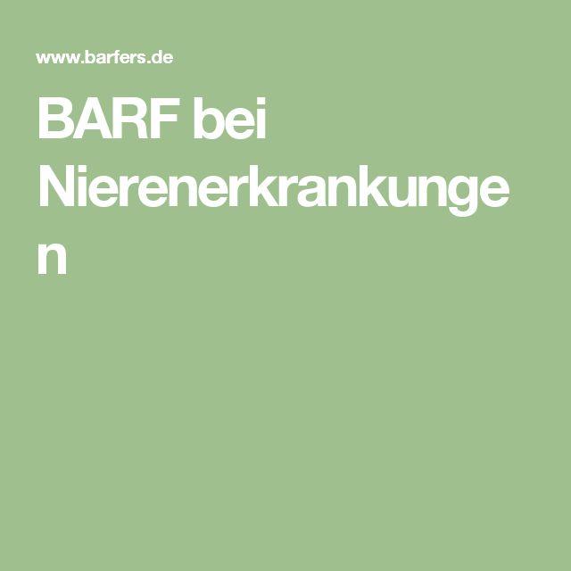 BARF bei Nierenerkrankungen