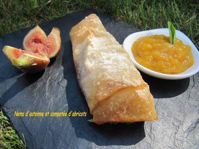 Pour les nems: Pelez les fruits, coupez-les en deux. Les évider et les couper en lamelles. Dans une casserole, sur feu moyen, les faire cuire avec le miel, la cannelle, le rhum, le beurre, les noix et les raisins. Laisser cuire et compoter 20 MIn....