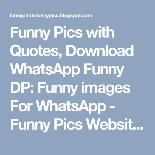Funny Pics with Quotes, Download WhatsApp Funny DP: Funny images For WhatsApp - Funny Pics Website For Funny Photo Funny Pics Funny Pics with Quotes
