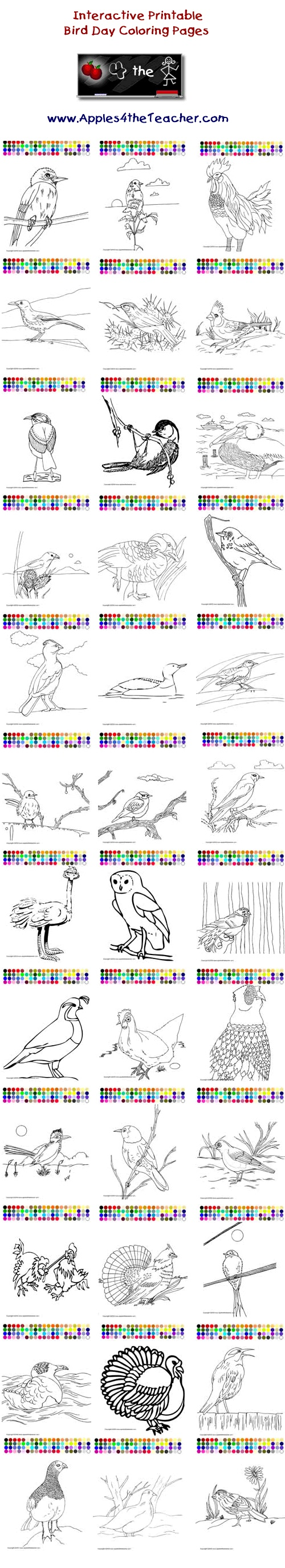 Printable interactive Bird Day coloring pages, Bird Day coloring pages for kids.