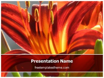 Get this #Free #Tulip #Flower #PowerPoint #Template with different slides for you upcoming #powerpoint #presentation. #Free #Tulip #Flower #ppt #template is easy to use and customize.