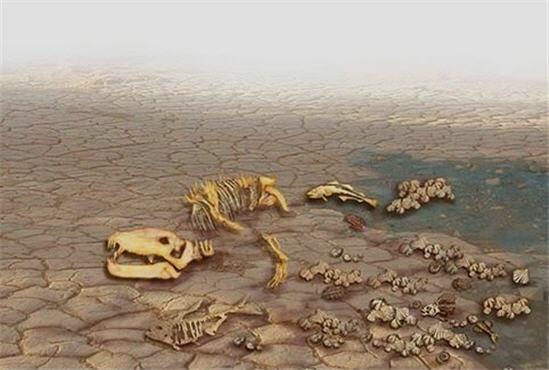 Önümüzdeki 300 yıl içerisinde, günümüzde var olan türlerin tamamının%75'inin soyu tükenecektir.
