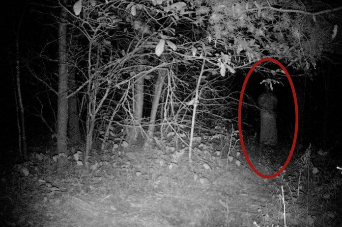There are hundreds if not thousands of 'real' ghost pictures clogging up the internet. Some have natural explanations, most are faked. However sometimes, if you search long and hard enough you'll find some photos that are harder to just explain away.