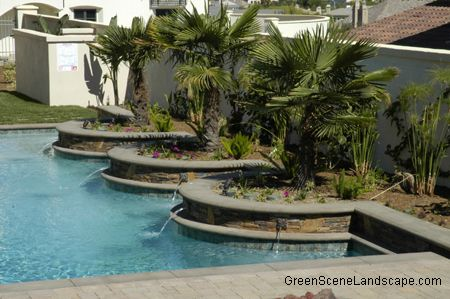 The 25 Best Plants Around Pool Ideas On Pinterest Landscaping Around Pool Backyard Pool