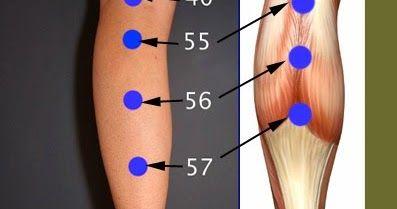 Puntos de su pantorrilla para aliviar el dolor de espalda. Los cuatro puntos que se muestran son fáciles de localizar y de dar masaje. ...
