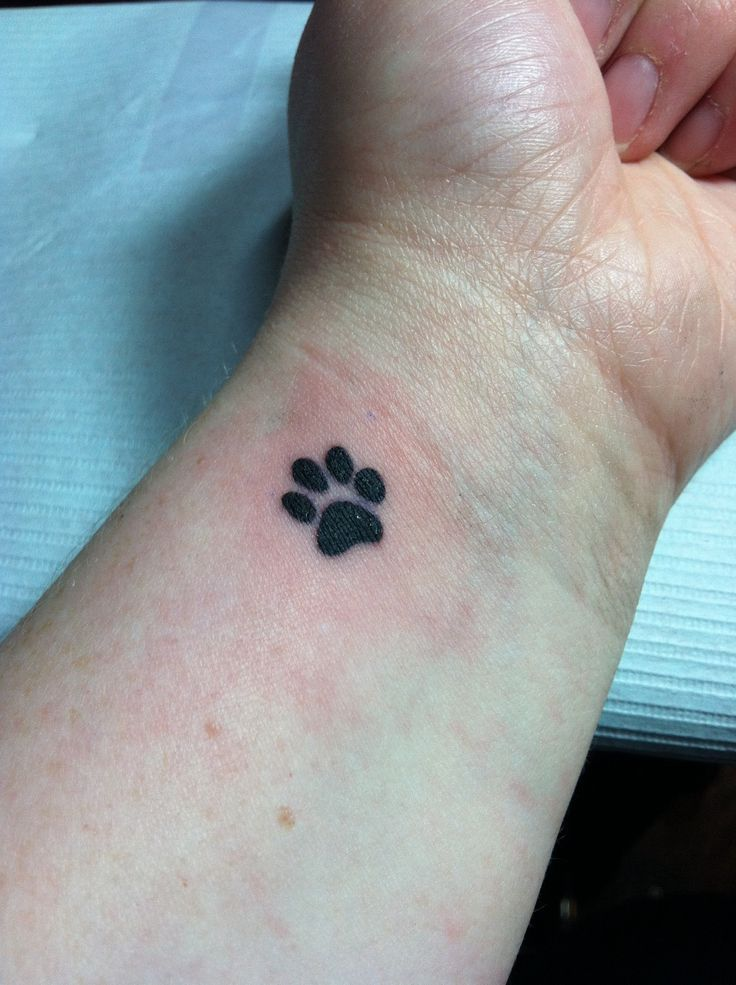 Little Black Paw Print Tattoo On Inner Wrist