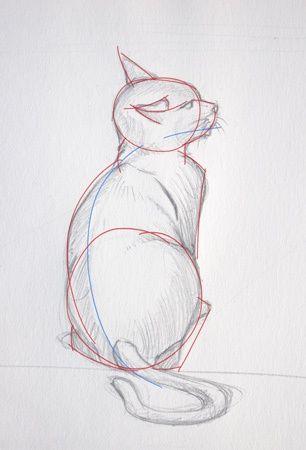 Les étapes importantes pour dessiner le chat assis regardant en l'air