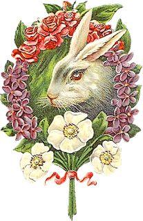 Zibi Vintage Scrap: Zajączek wielkanocny: Vintage Images, Easter Postcards, Easter Images, Easter Graphics, Easter Spring Prints, Fav Easter Vintage, Vintage Easter Spring, Diy Vintage, Vintage Cards