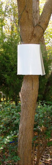 I will definitely be making something similar for the fruit trees to keep the raccoons and squirrels out!