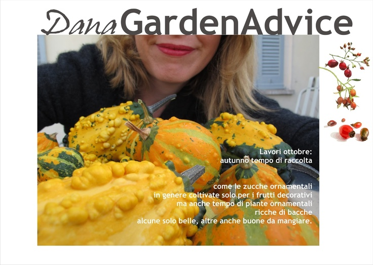 Dana Garden Design: DanaGardenAdvice_ottobre