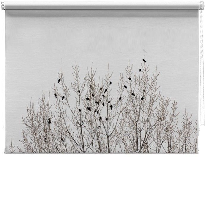 Birds on branches printed blind http://www.artylicious.co.uk/printed-blinds/landscapes/birds-branch-blind.html