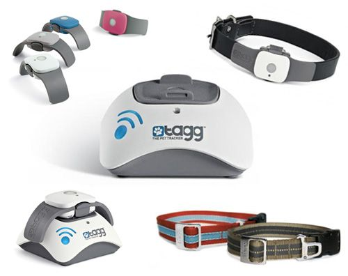 I want one of these so bad for Hunter. It's a GPS collar for your dog or cat. It'll email or text you if your dog leaves your yard. You can then go to the website or iPhone app and get a map and direction on exactly where they are. It's kind of expensive but I'll get one someday.