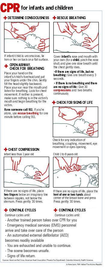 Animal CPR Diagrams | Cpr Instructions Jpg - kootation.com