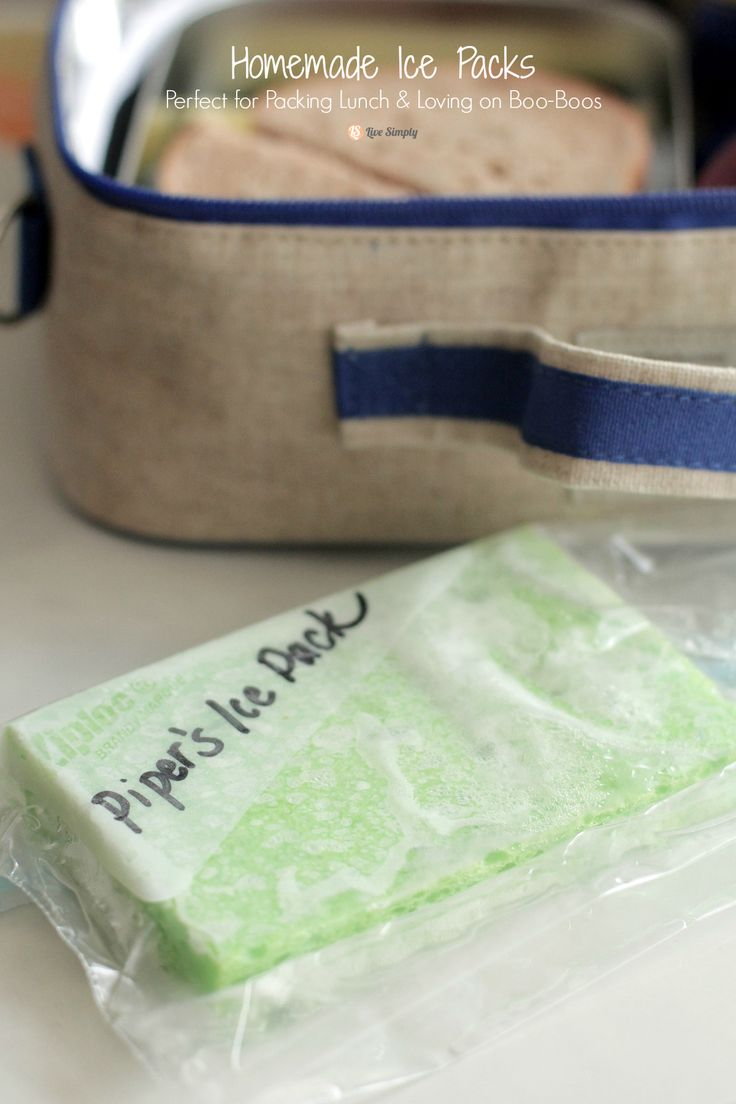 AWESOME!!! DIY homemade ice packs. Save money and avoid toxins in your lunch box. Only two ingredients.