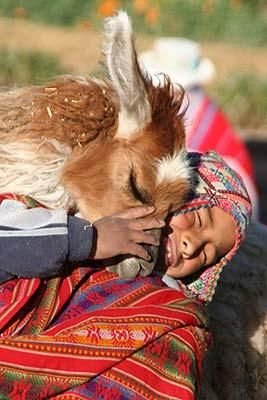 Peruvian boy and his llama, Yaque, Peru. By Karen Sparrow of Edenbridge, Kent