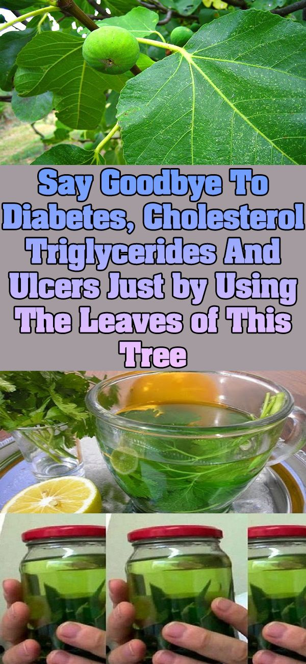 The latest studies have showed that fig tree leaves are efficient treatment of diabetes and other medical conditions. Nature offers us numerous ingredients that for treatment of many different ailments, but many of you would be surprised of the fact that fig leaves can treat almost any disease and condition. Namely, these leaves are high …