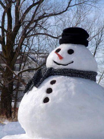 If only our snow men ACTUALLY looked like this, this is not real snow! lol