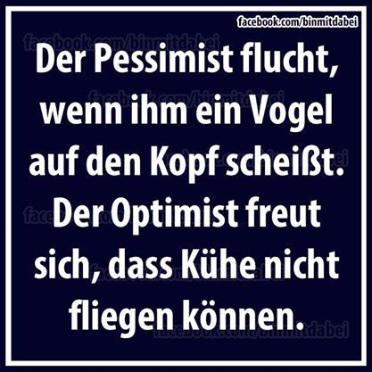 Free translation: The pessimist curses if a bird shits on his head. The optimist ist happy that cows can't fly.