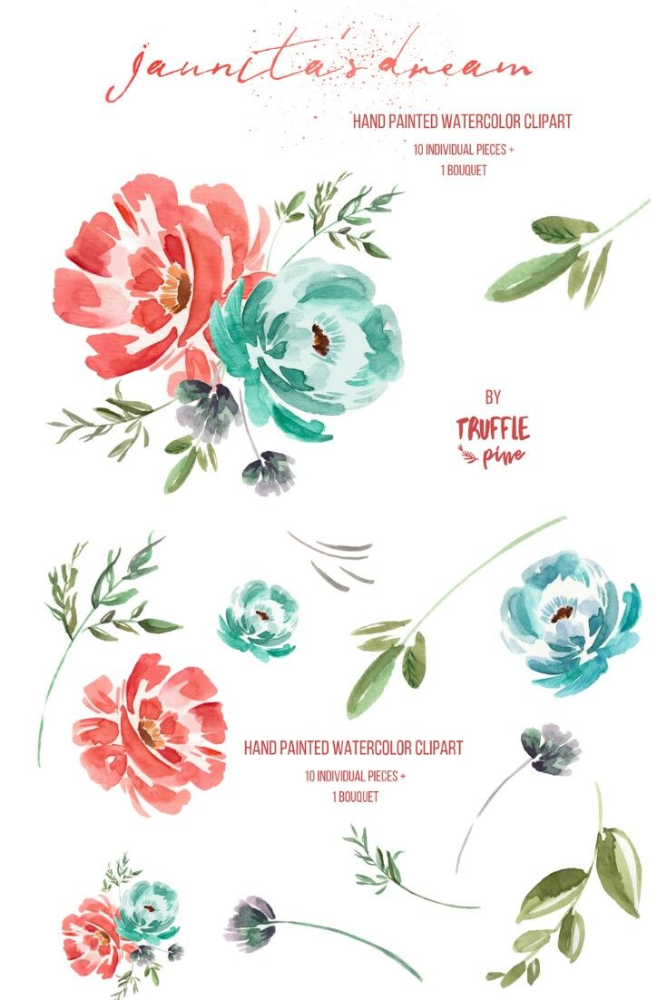 Watercolor Flower Borders Backgrounds Dusty Rose Floral Clipart