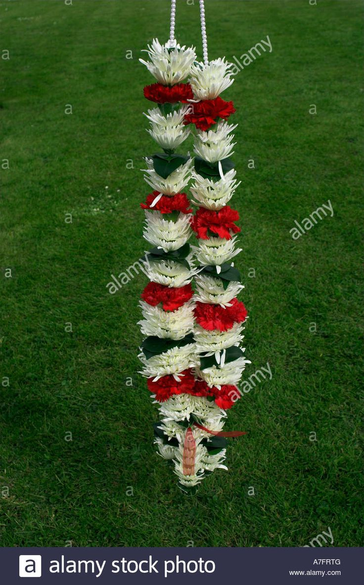 INDIAN WEDDING FLOWER GARLAND Stock Photo