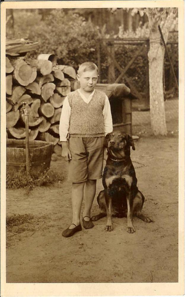 Boy w BEAUCERON or rottweiler type DOG wood logs RPPC real photo postcard