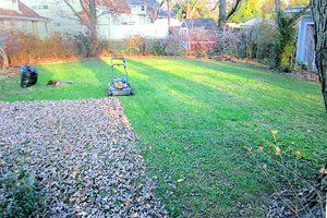 Mulching fall leaves using a lawn mower - and other fall lawn care. | #agentVal #sanantonio ☆ Metro Realty ☆