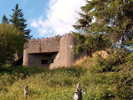 Pěchotní srub R-S-84 Arnošt na Anenském vrchu
