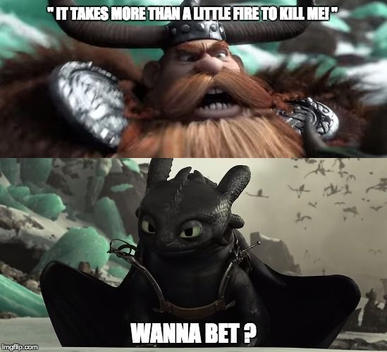 """ IT TAKES MORE THAN A LITTLE FIRE TO KILL ME! "" WANNA BET ? 