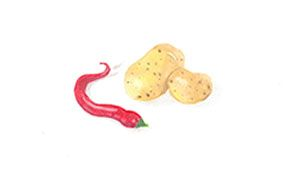 Pastel chilli and potatoes