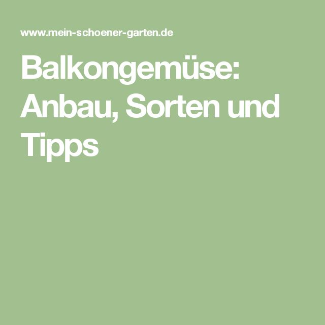 25+ Best Ideas About Balkongemüse On Pinterest | Balkongarten ... Obstbaume Im Topf Sorten Anpflanzen