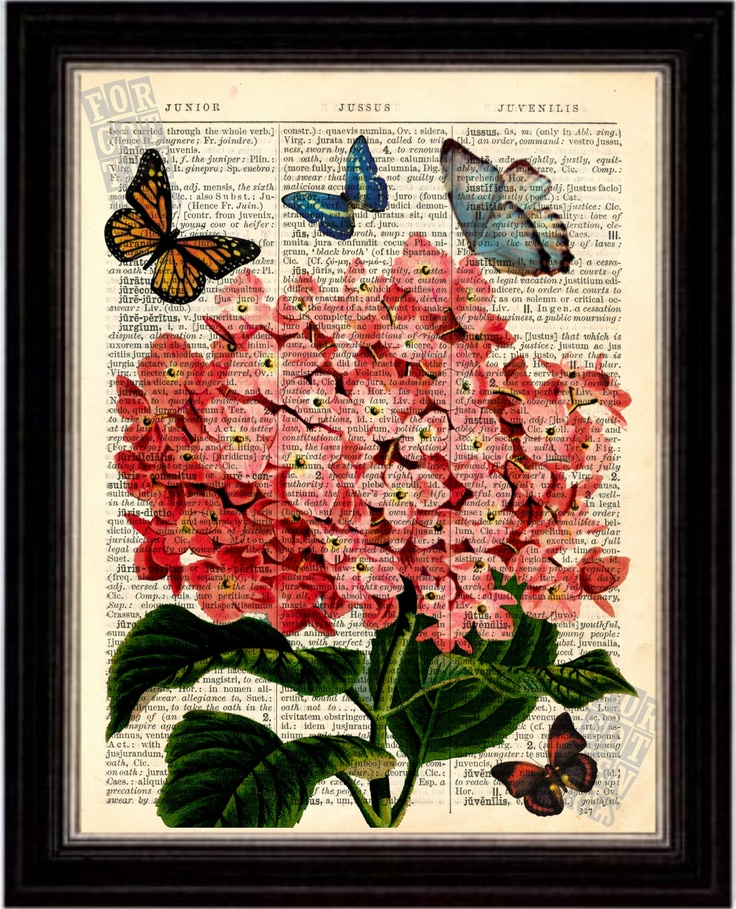 Flower Print - Pink Hydrangea with Butterflies Print on Upcycled 1896 Latin English Dictionary Page. $8.00, via Etsy.