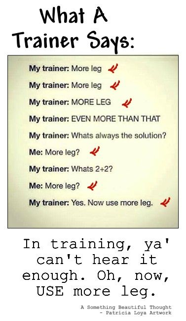 """What a trainer says, """"more leg.""""  #equine_equine, #hunter_jumper http://elmsteadfarm.net/753/elmstead-welcomes-a-new-assistant-trainer/"""