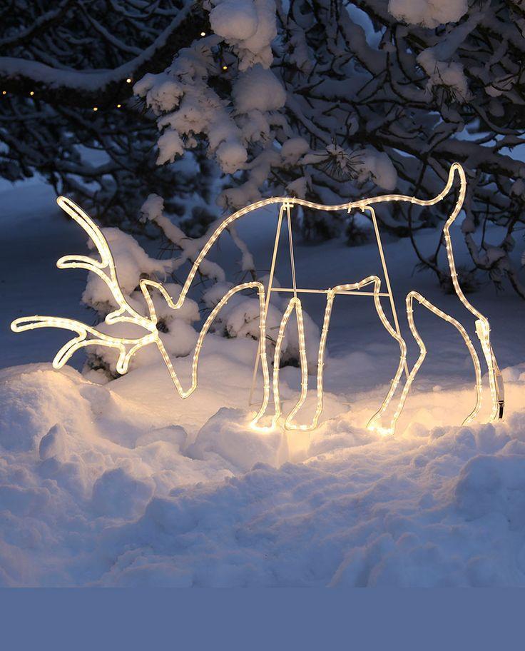 En vakker LED silhuett til utebruk av en beitende rein fra Star Trading. Vil gjøre hagen din vakker!