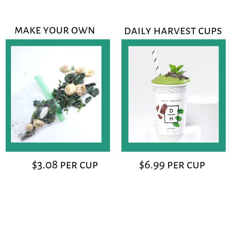 So machen Sie Ihren eigenen Smoothie für die tägliche Ernte – Mehr Mama!   – Drinkalicious