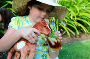 Non-alcoholic mint julep recipe for kids for the Kentucky Derby