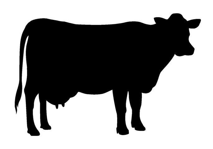 Cow Silhouette | ART: ANIMAL TEXTURE SILHOUETTE LESSON ...