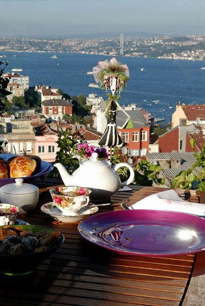 Overlooking the Bosphorus . Istanbul