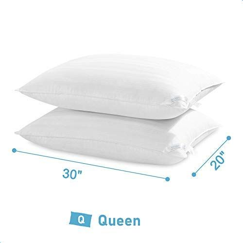 Downluxe Down Alternative Queen Size Pillows 2 Pack 100
